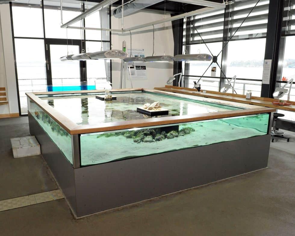 Remote access in grote aquaria - aquarium